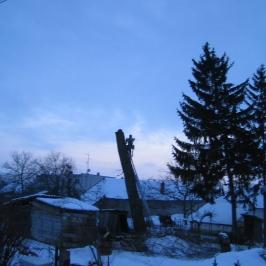 Strom s priemerom 120_16