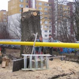 Strom s priemerom 190_12